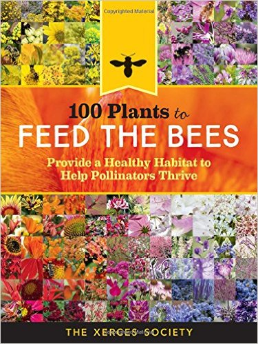 100-plants-to-feed-the-bees